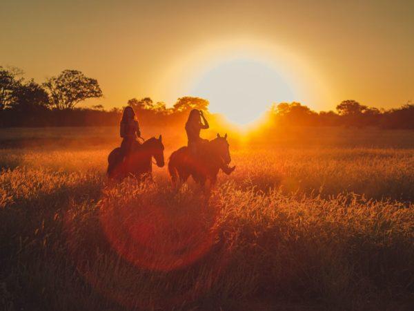 Voorjaar voor paarden